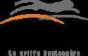 Logo Bertrand Puma
